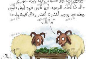 صورة صور عن عيد الاضحى , عيد اضحى مبارك مع تلك الصور الرائعة