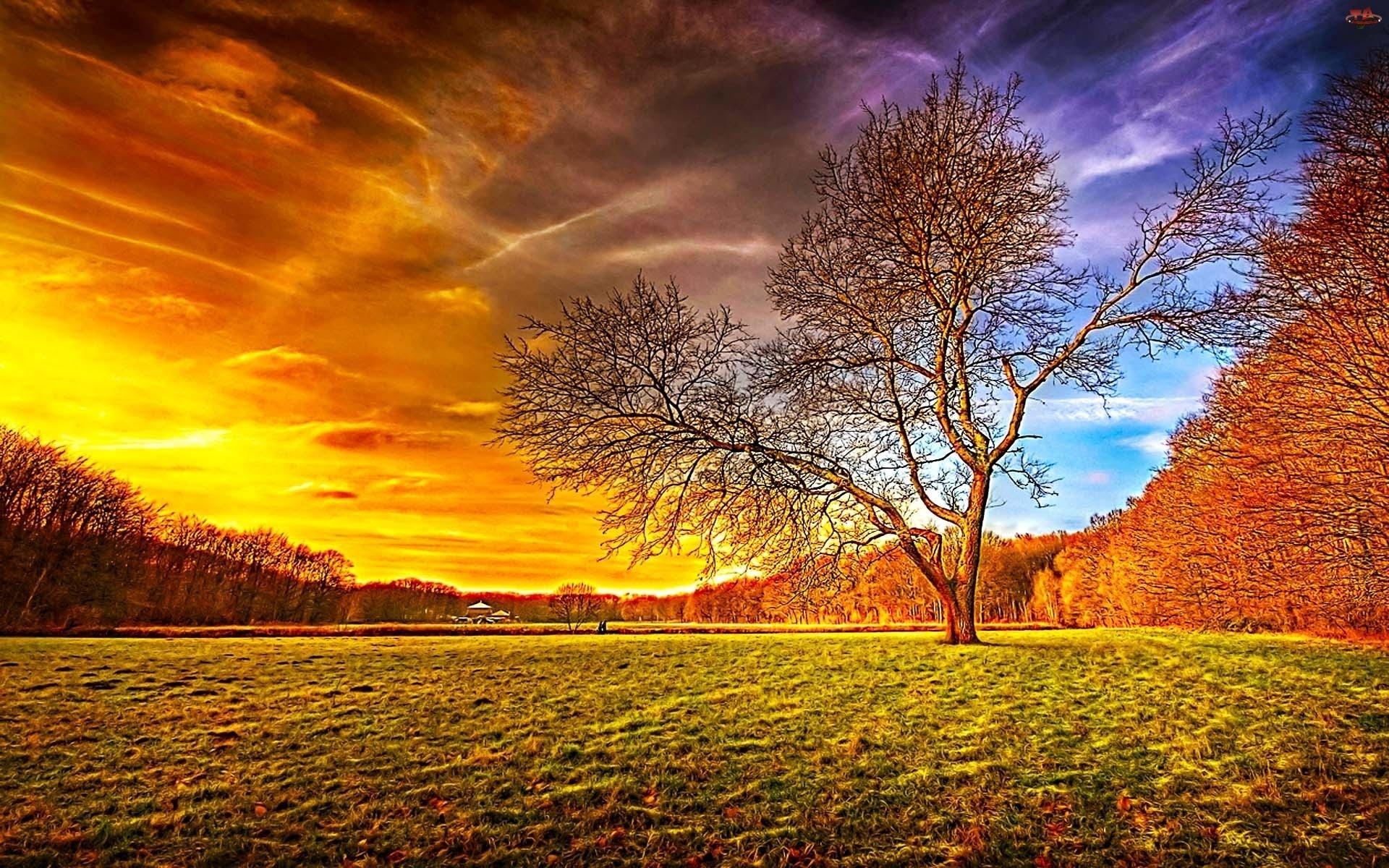 صورة خلفيات جميله , الحياة افضل مع خلفية جميلة