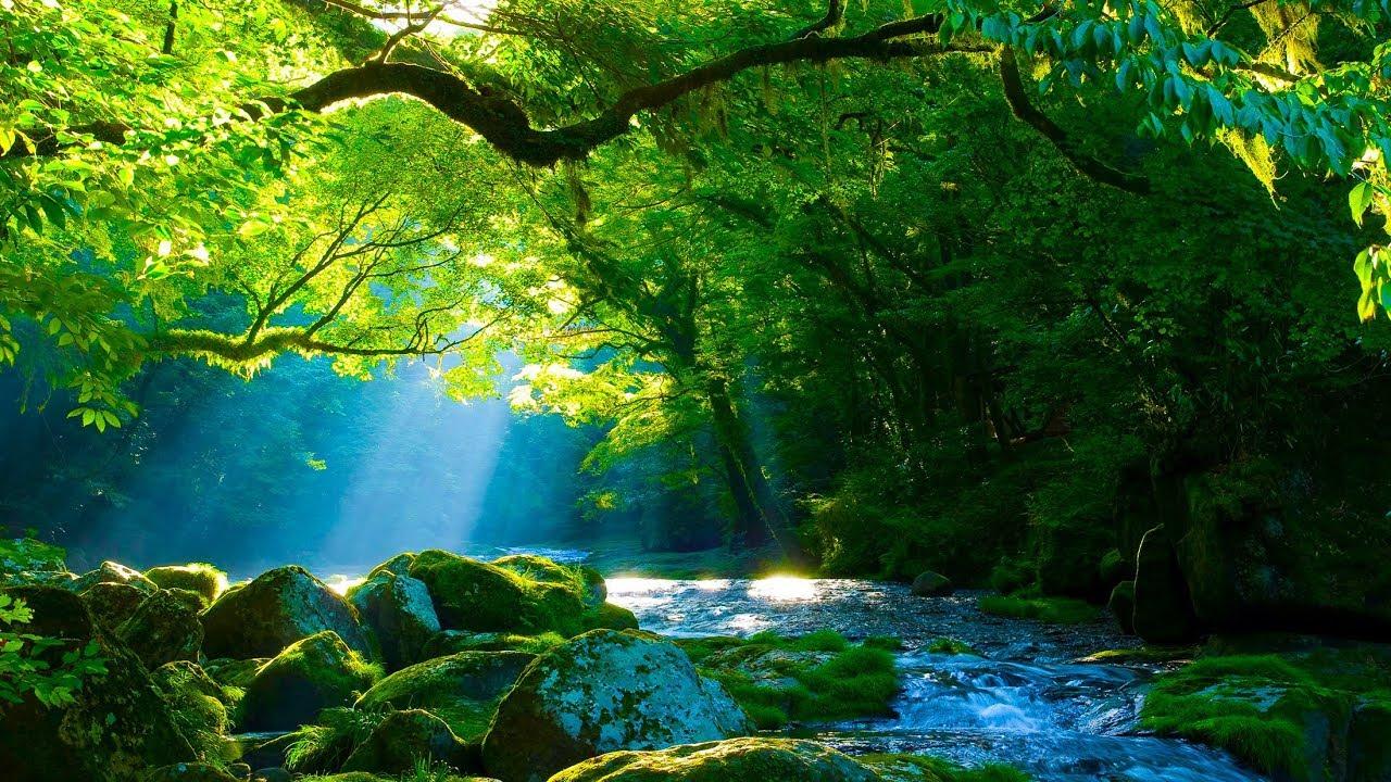 صورة اجمل المناظر الطبيعية , احلى صور طبيعية خلابة