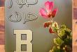 بالصور صور حرف b , احلي صور لحرف b 5398 2 110x75