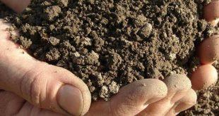 صوره مكونات التربة , تعرف على مكونات التربة وانواعها