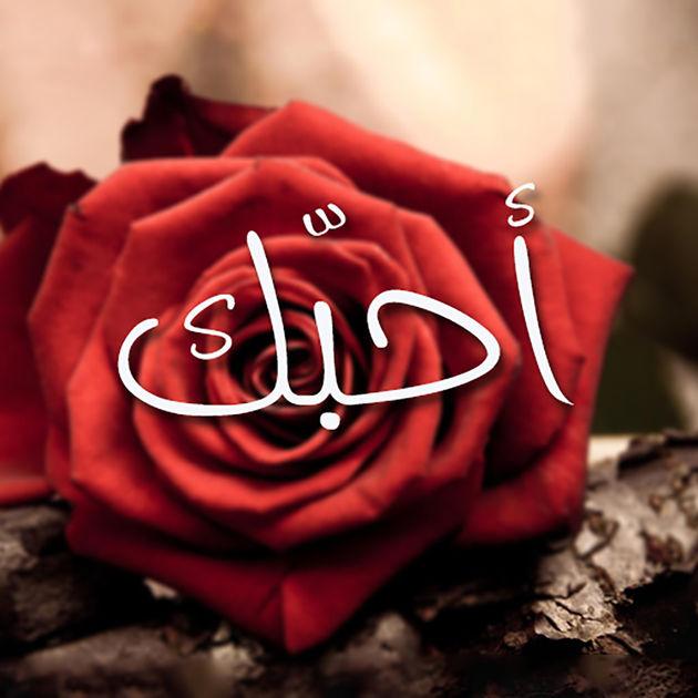 صورة كلمة احبك , اجمل صور كلمه احبك 5655 3