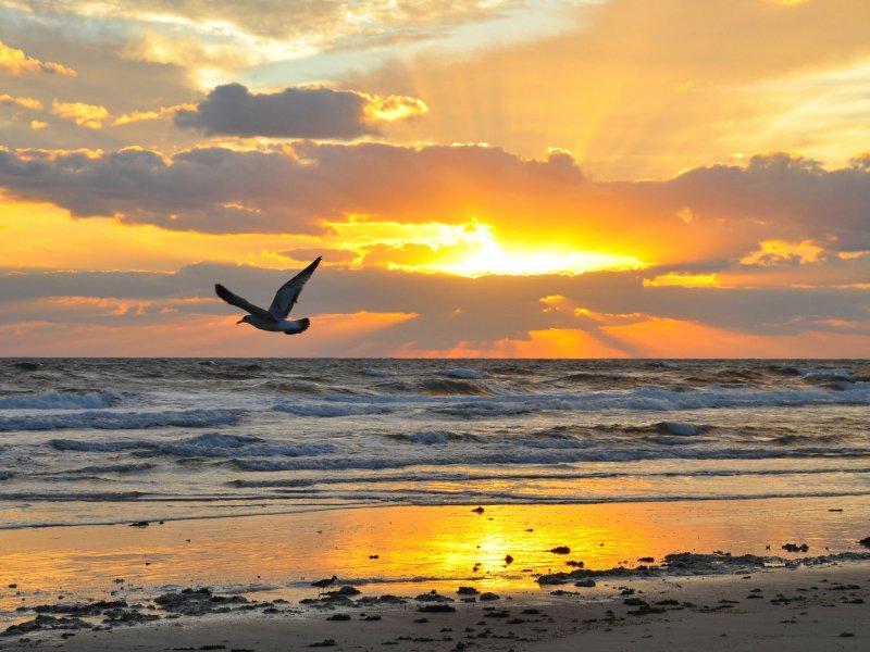صورة صور مناظر جميلة , اجمل الصور للمناظر الطبيعيه 5687 4