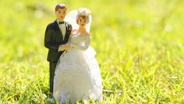 صورة صور عريس وعروسة , صور جميلة للعرسان