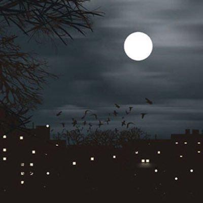 صورة صور عن الليل , صور الليل الساحر