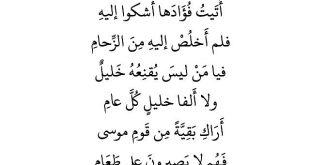 صورة شعر عربي فصيح , شعر باللغه العربيه