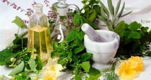 علاج كثرة التبول بالاعشاب , علاج طبيعي وسريع لكثره التبول