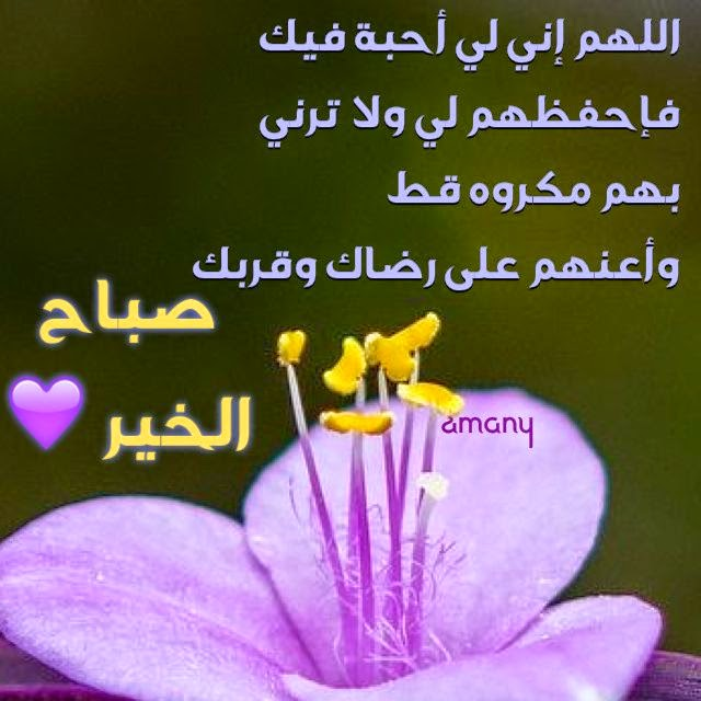 بالصور كلمات صباحية للاصدقاء , اروع صباح للاصدقاء 1480 9
