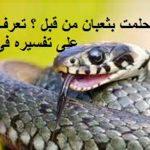 تفسير الحية في المنام , ما تفسير رؤيه الثعبان في المنام