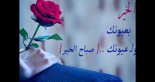 صوره كلمات صباح الخير للحبيب , اجمل صور صباحيه للمحبين