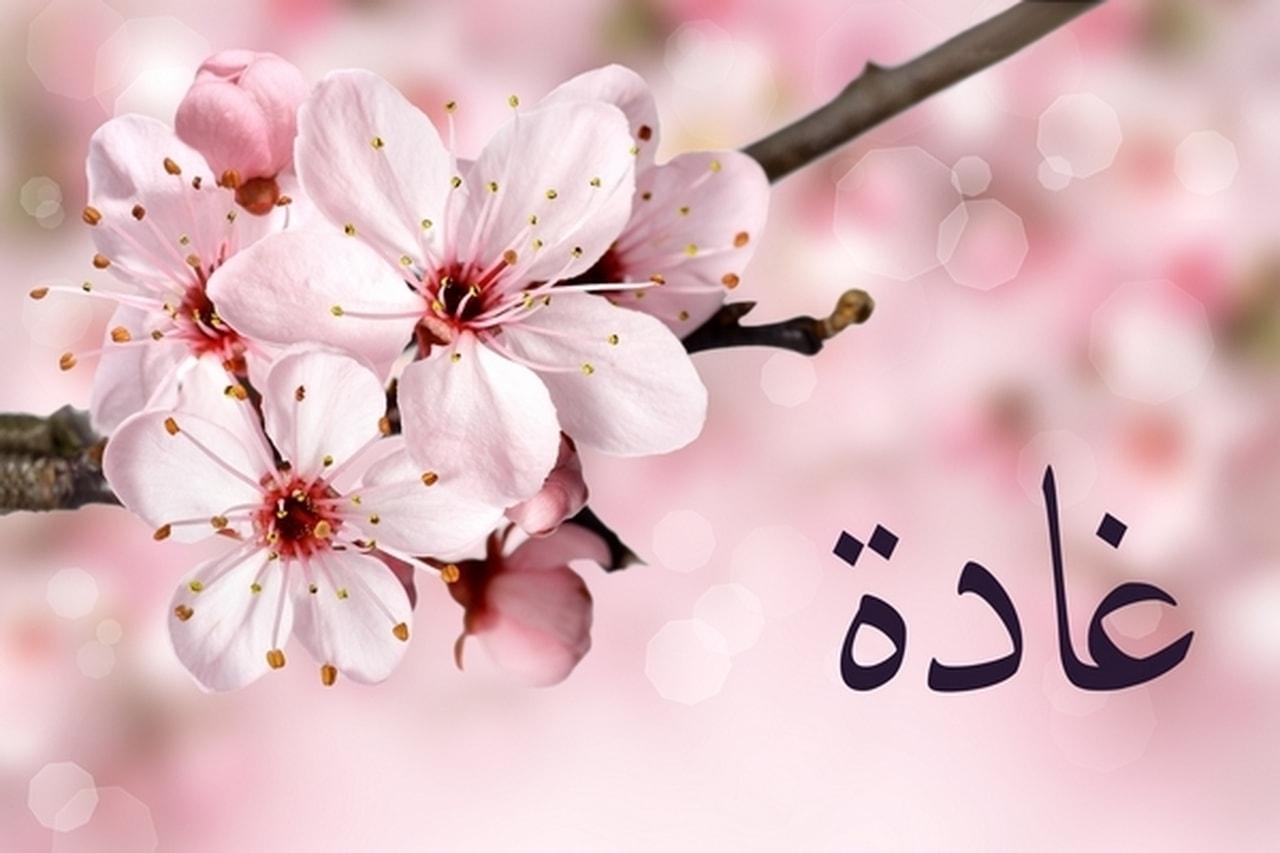 صورة اجدد اسماء البنات , اسماء مواليد بنات جديده ومميزه