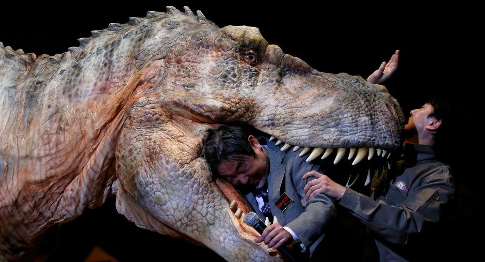 صورة معلومات عن الديناصورات , معلومات مدهشة عن الديناصورات