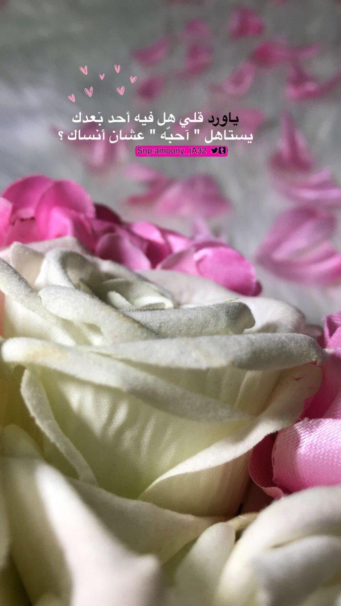 عبارات جميلة كلام عن الورد تويتر Aiqtabas Blog