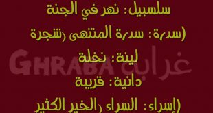 صور معاني اسماء بنات , شاهد بالفيديو اجمل اسماء بنات ومعانيها