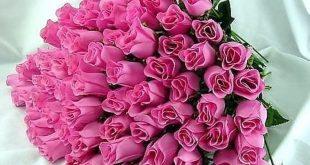 صوره باقات زهور , اجمل باقات زهور