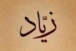 صور معنى اسم زياد , وصفات حامل هذا الاسم