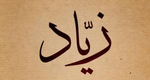 معنى اسم زياد , وصفات حامل هذا الاسم