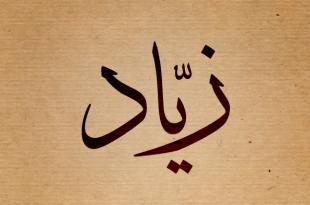 صورة معنى اسم زياد , وصفات حامل هذا الاسم