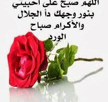 صورة صباح الورد حبيبي , اجمل صباح