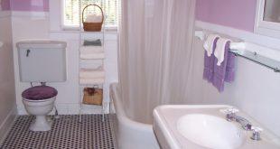 صوره ديكور حمامات صغيرة , كيف تنظمى حمامك الصغير