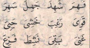 بالصور كلمات عربية , افضل طرق نطق الكلمات العربية 3775 2 310x165