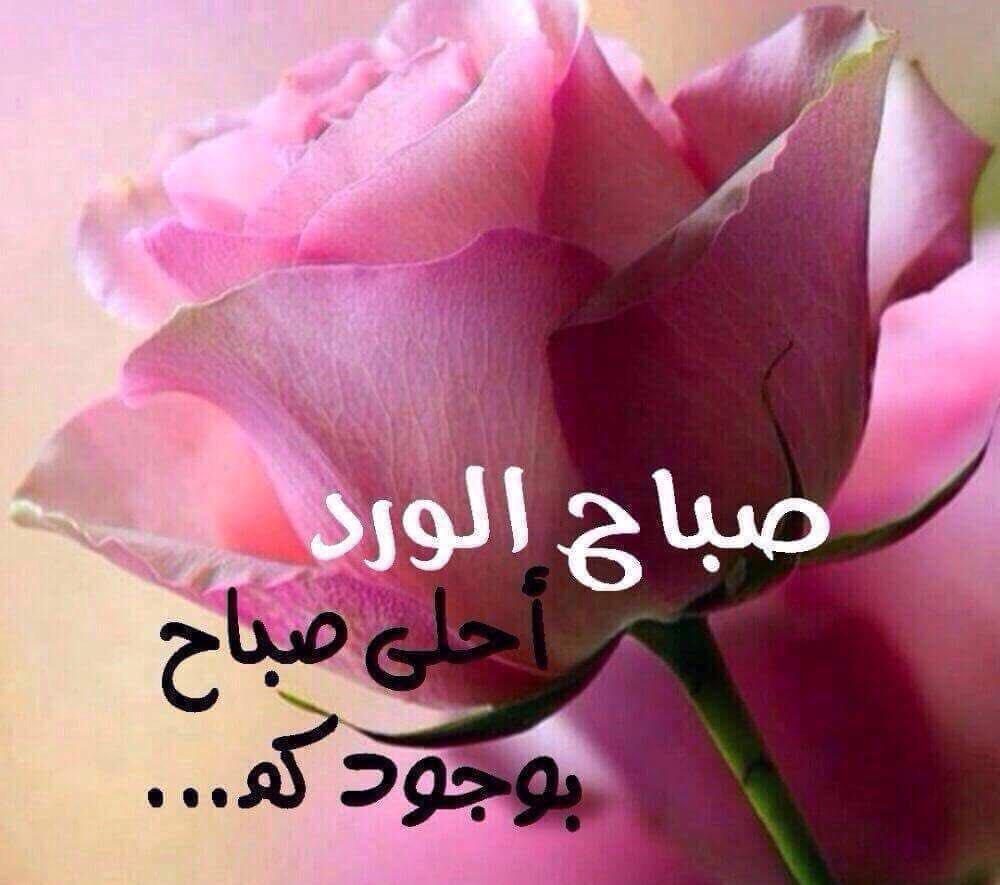 بالصور صباح الحب حبيبي , احلى رسائل صباح الخير للحبيب 3859 22