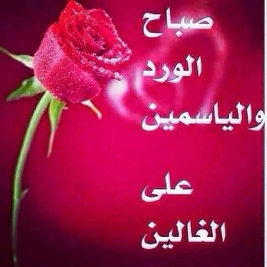 بالصور صباح الحب حبيبي , احلى رسائل صباح الخير للحبيب 3859 33