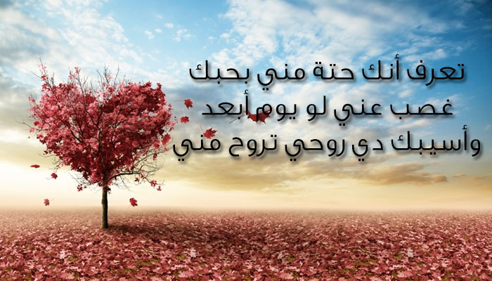 بالصور اجمل رسائل الحب , مسجات حب وغرام 3891 4