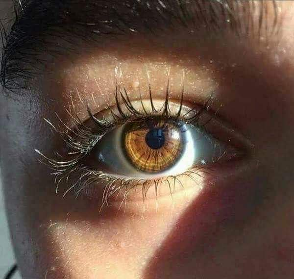 بالصور احلى عيون , اجمل عيون ساحره 3904 11