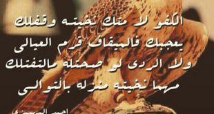 صوره قصائد مدح الرجال الكفو , اشعار مدح للصديق الكفو