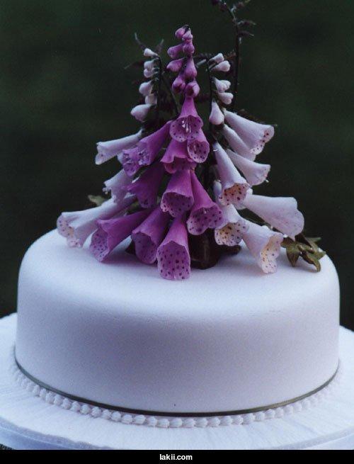بالصور تورتات اعياد ميلاد للكبار , تورتات جميله للتهنئه باعياد الميلاد 3973 2