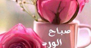 صوره صور صباح ومساء الخير , اجمل الصور الصباحيه و المسائيه