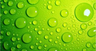 بالصور خلفية خضراء , خلفيات باللون الاخضر 4473 11 310x165