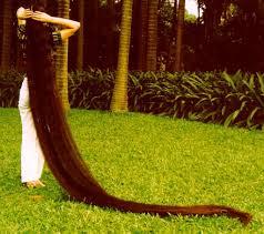 صورة اطول شعر في العالم , اطول سيدات تمتلك شعر 4952 5
