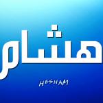 معنى اسم هشام , معنى لم تعرفه من قبل لاسم هشام