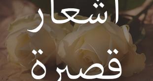 صوره ابيات شعر قصيره حكم , صور شعر ولا اروع