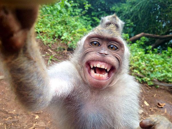 بالصور موقف مضحك , اضحك من قلبك على لقطات مضحكة موت 1054 2