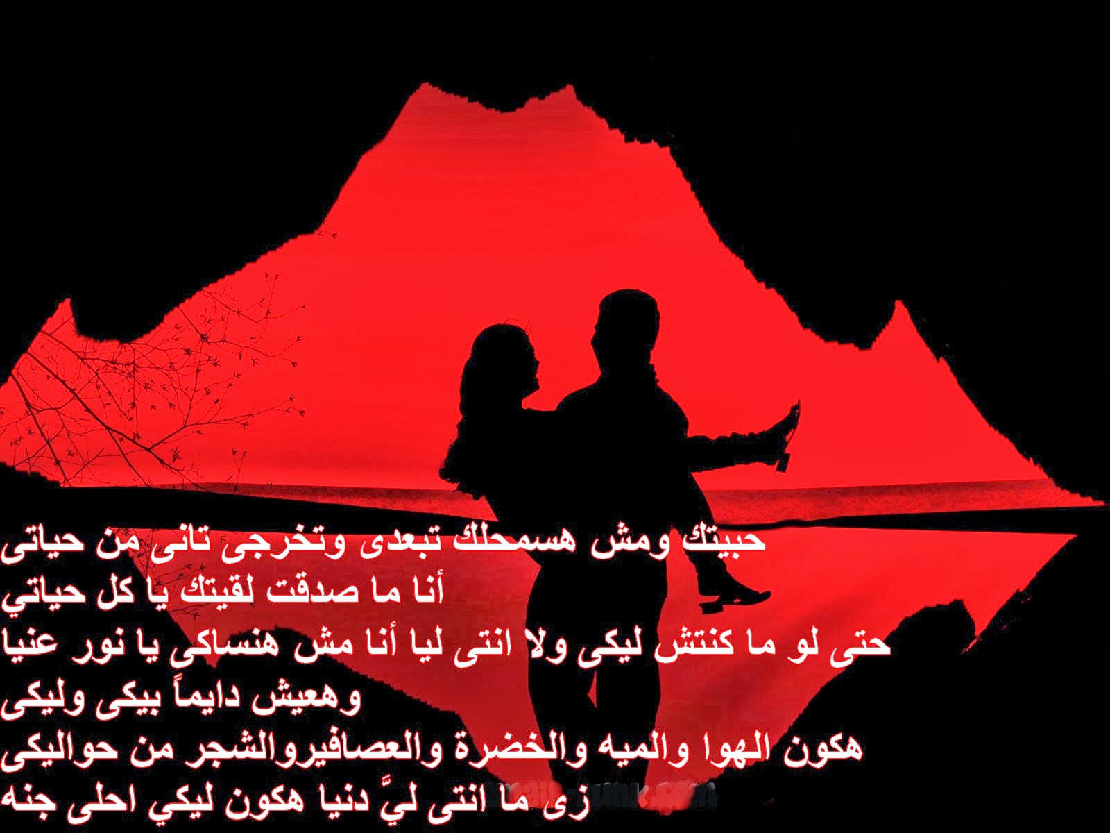 بالصور اجمل كلام عن الحب , عبارات حب رومانسية جدا 1061 6