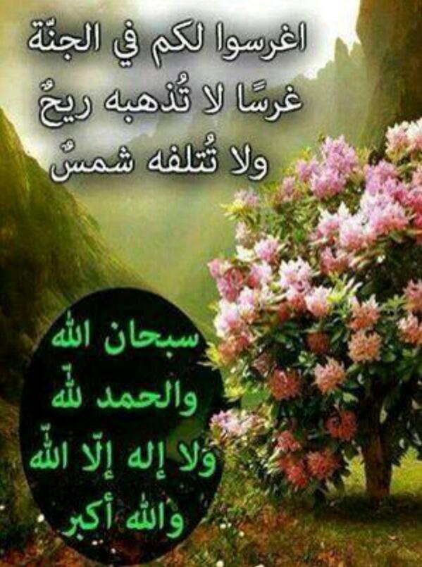 بالصور صور كلام الله , اجمل كلام كلام الله سبحانه وتعالى 156 4
