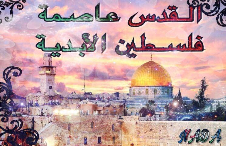 بالصور شعر عن فلسطين , اجمل الاشعار عن فلسطين 1581 3