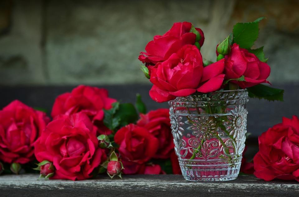 صور صور ورد صور ورد , اجمل اشكال الورد والوانه