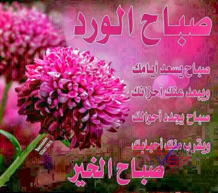 بالصور صباح الخير يا حبيبتي , الصباح الجميل دائما مع الاحبه 2667 3