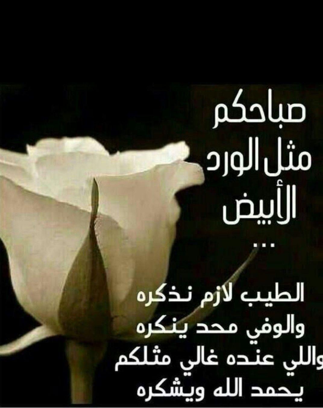 بالصور صباح الخير يا حبيبتي , الصباح الجميل دائما مع الاحبه 2667 4