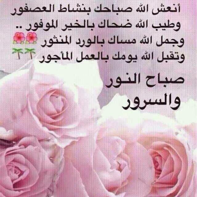 بالصور صباح الخير يا حبيبتي , الصباح الجميل دائما مع الاحبه 2667 5