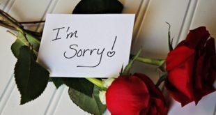 صوره كلمات اعتذار للحبيب , ماذا اقول لحبيبي لاعتذر منه
