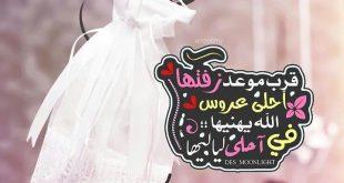 صوره رمزيات عروس , اجمل صور عن العروسه