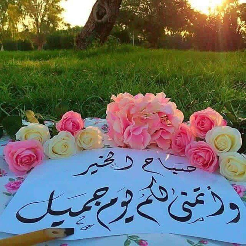 بالصور صباح جميل , اجمل صباح للاحبه صباح الورد 3351 11