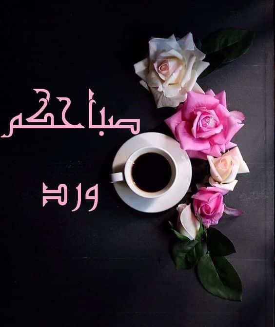 بالصور صباح جميل , اجمل صباح للاحبه صباح الورد 3351 5