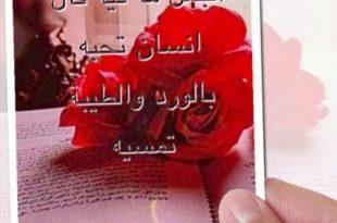 بالصور مساء الحب حبيبي , اجمل مساء لحبيبي وبس 3409 10 310x205