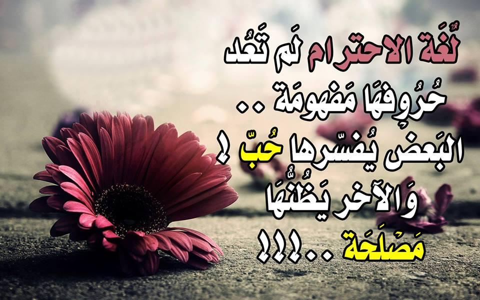 بالصور بوستات حلوه للفيس بوك , اجمل بوستات لمشاركتها علي الفيس بوك روعه 3423 1